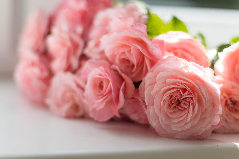 peonies bridal bouquet wedding florals