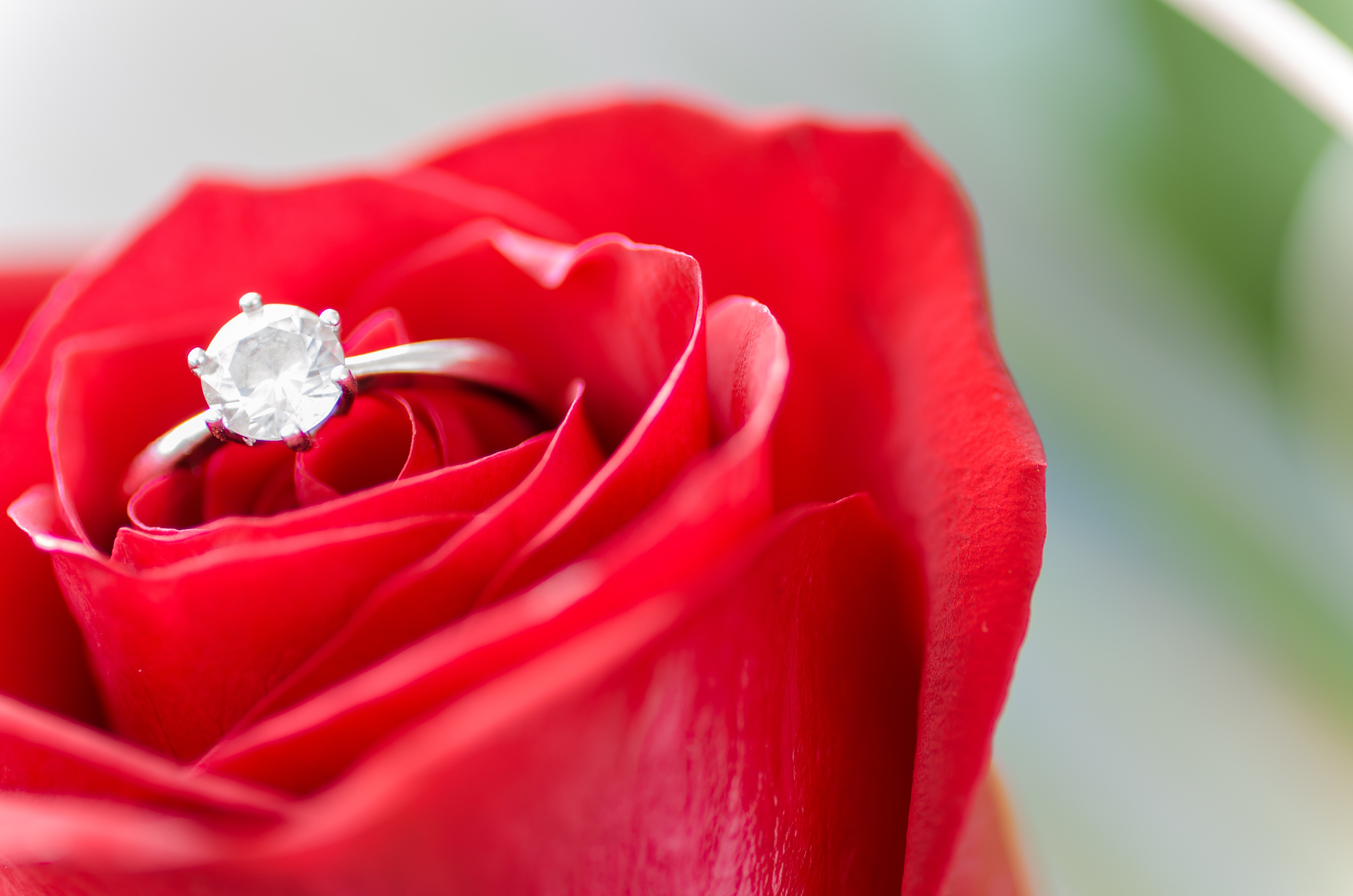 engaged wedding planner south carolina